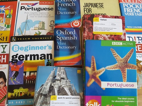 Foreign language guides