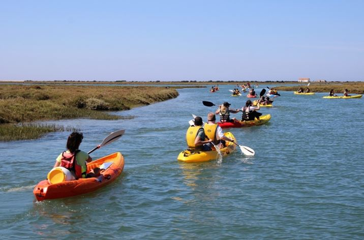 Ria Formosa Nature Reserve