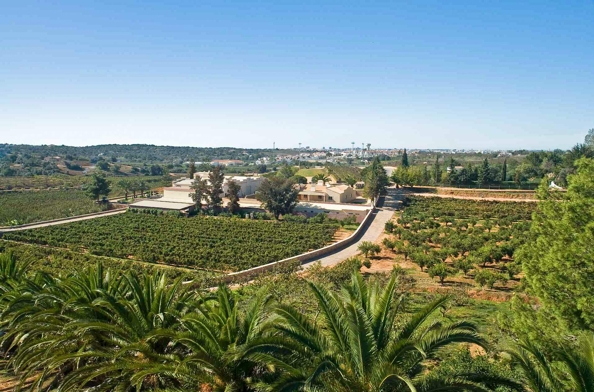 The Four Winds Apartments, 2 bedroom apartment in Carvoeiro Area, Algarve Photo #16