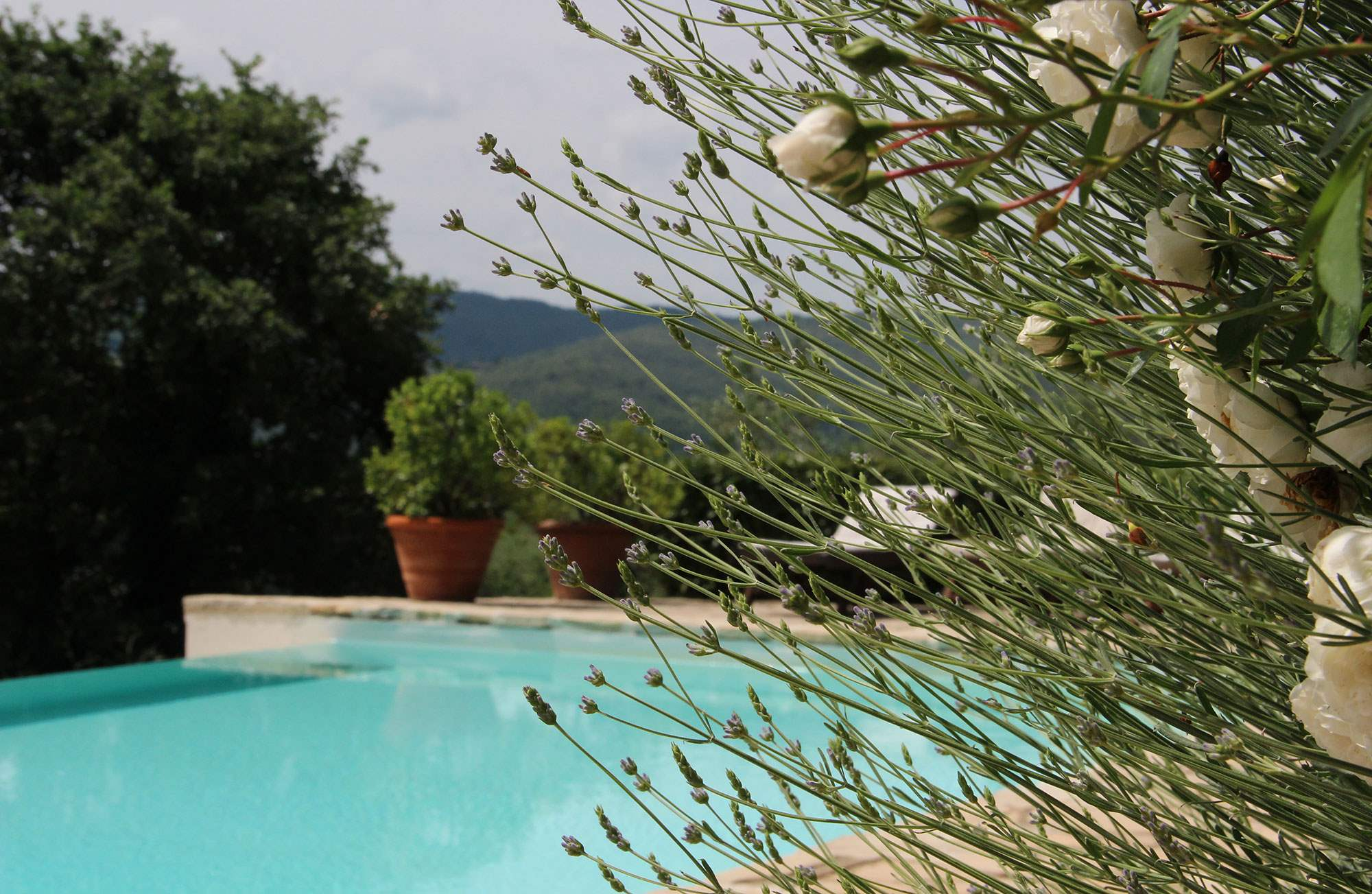 Villa Giacinto, 6 Bedroom rate, 6 bedroom villa in Chianti & Countryside, Tuscany Photo #17
