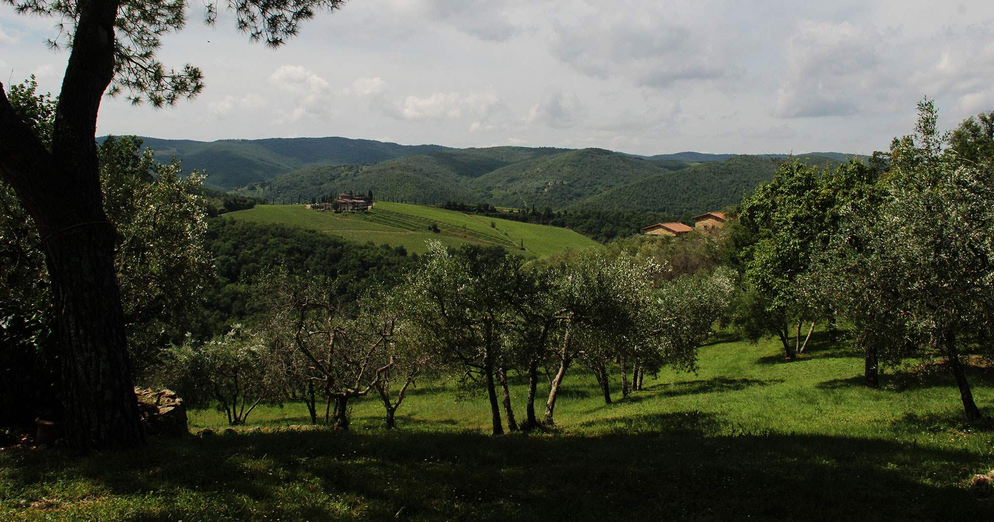 Villa Giacinto, 6 Bedroom rate, 6 bedroom villa in Chianti & Countryside, Tuscany Photo #31
