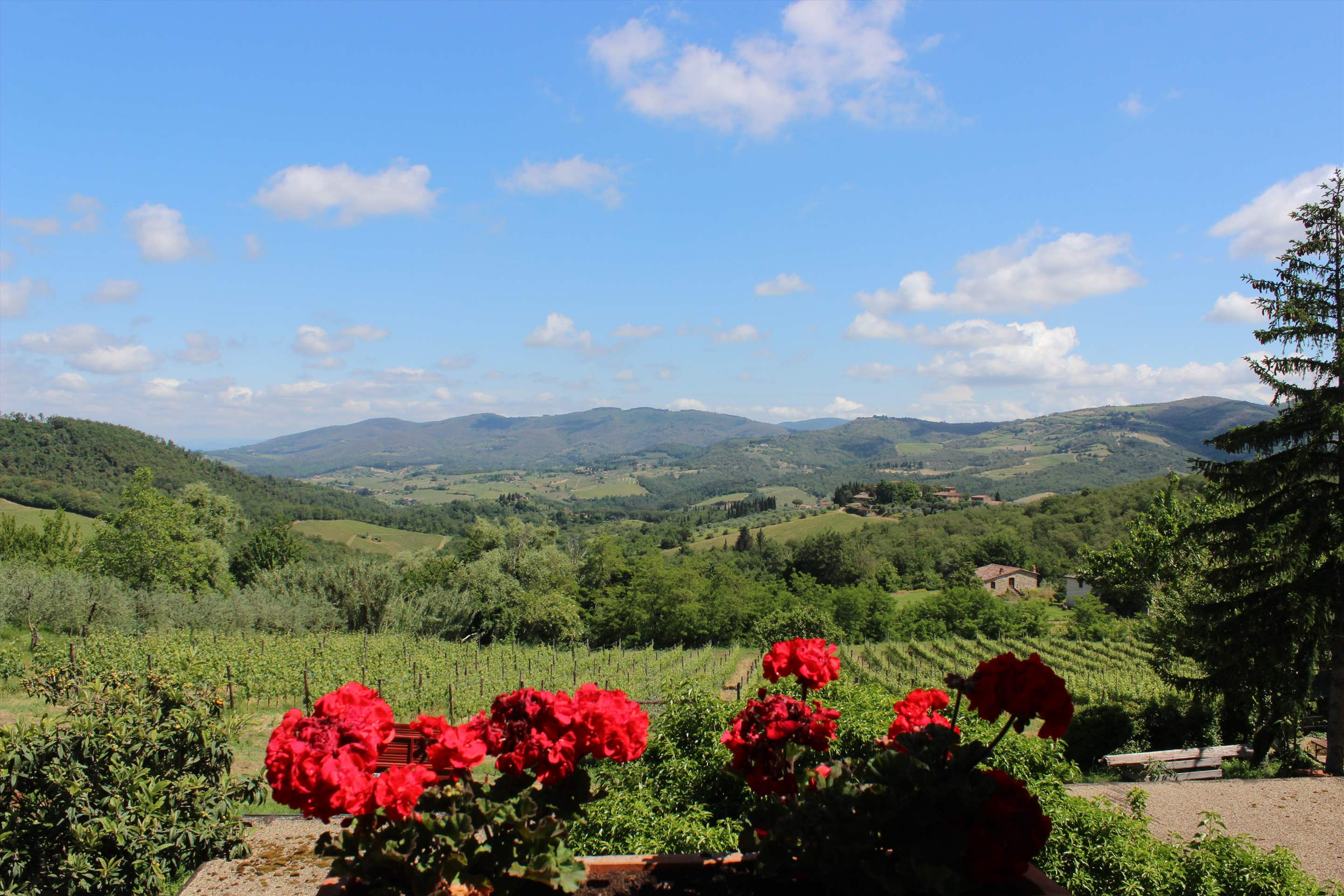 Villa Campana, 5 bedroom villa in Chianti & Countryside, Tuscany Photo #2
