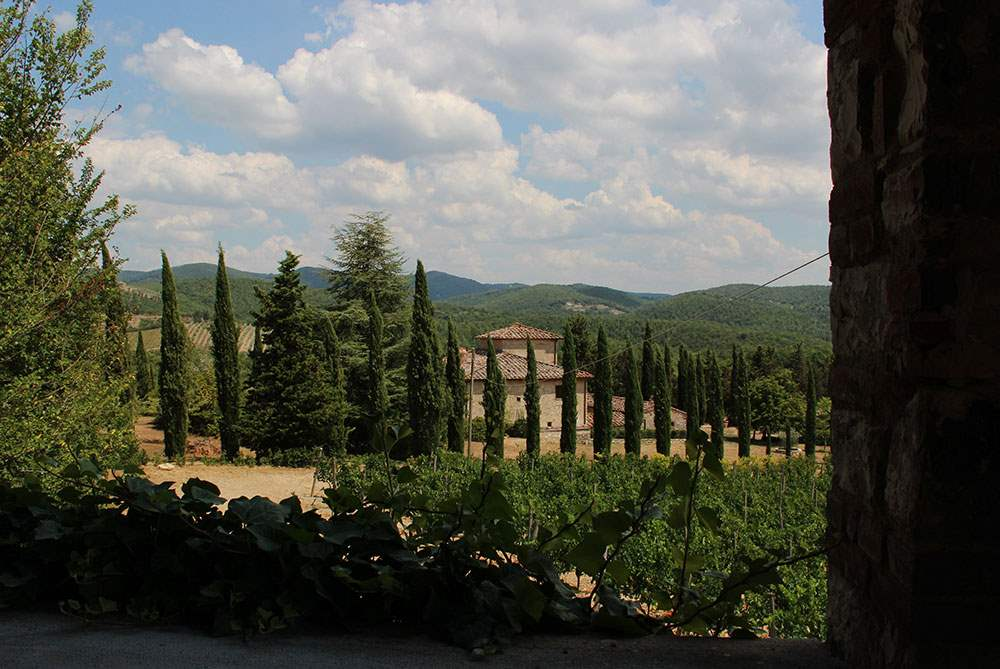 Villa Lecchi, 5 bedroom villa in Chianti & Countryside, Tuscany Photo #23