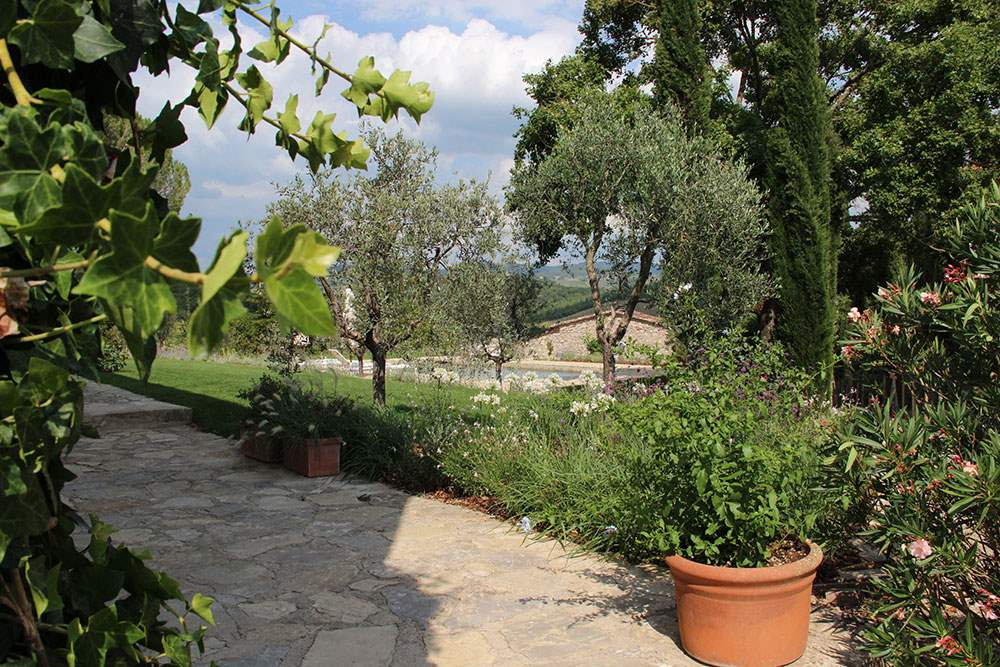 Villa Lecchi, 5 bedroom villa in Chianti & Countryside, Tuscany Photo #24