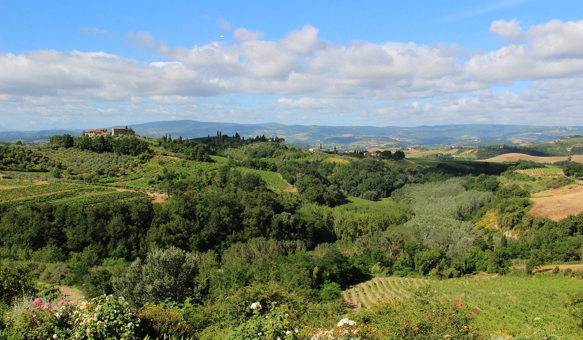 Villa Capanna, 3 bedroom villa in Chianti & Countryside, Tuscany Photo #24