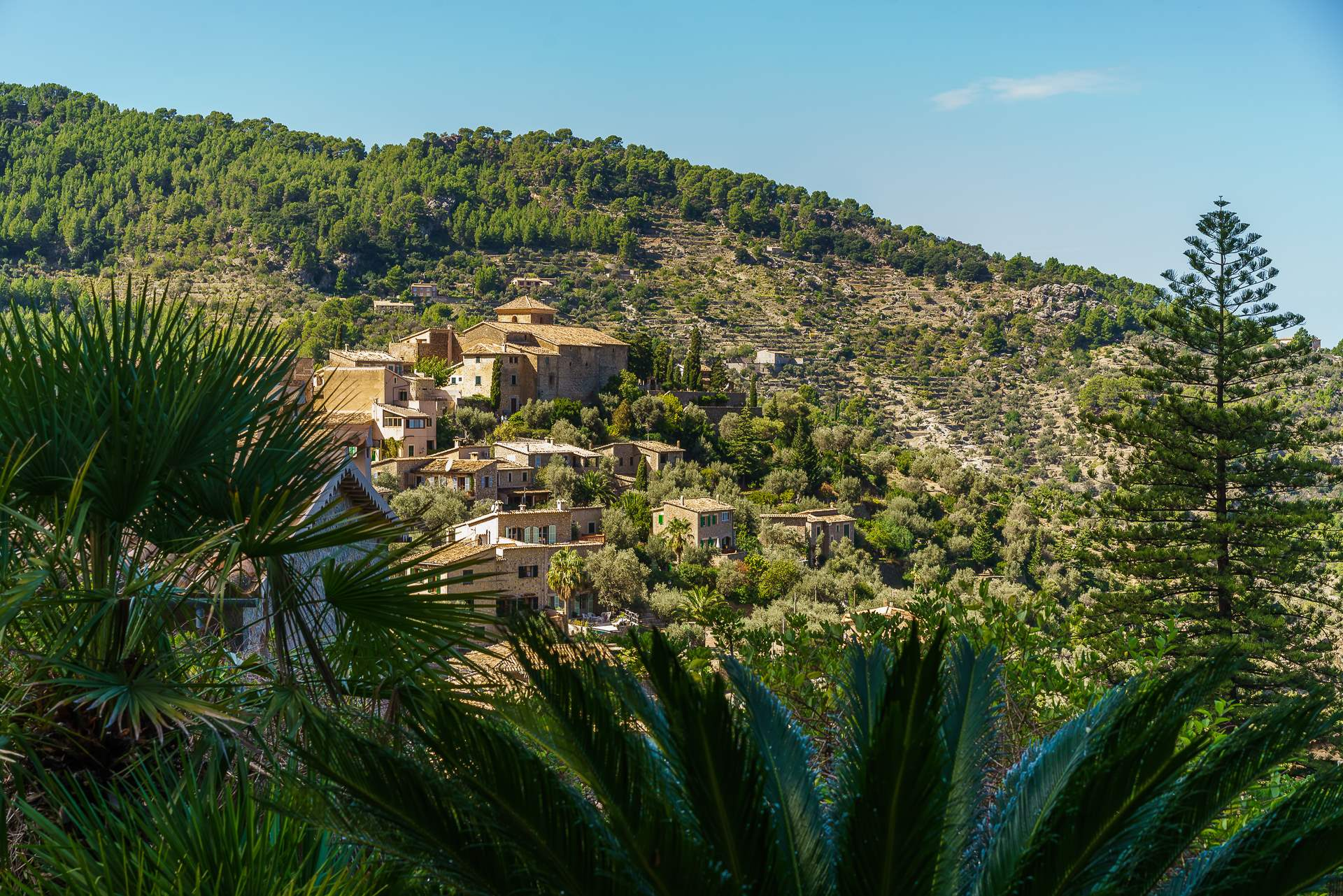 Sa Tanca, 3 Bedroom Rental, 3 bedroom villa in Soller & Deia, Majorca Photo #34