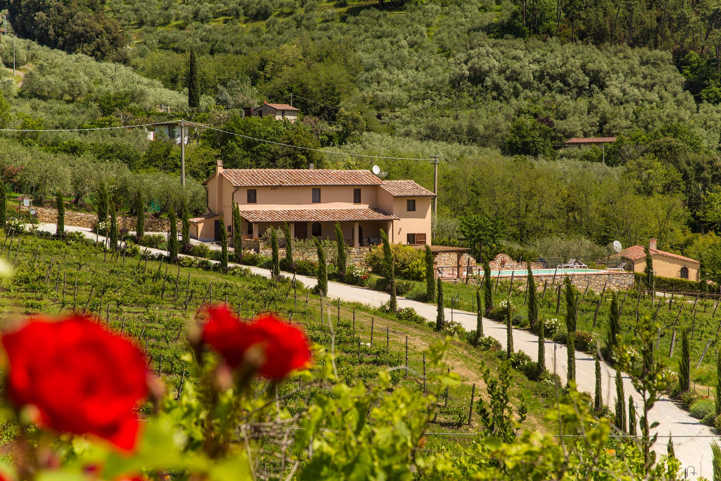 Casa Di Dante, 3 bedroom villa in North Tuscany - Pisa & Lucca Area, Tuscany Photo #17