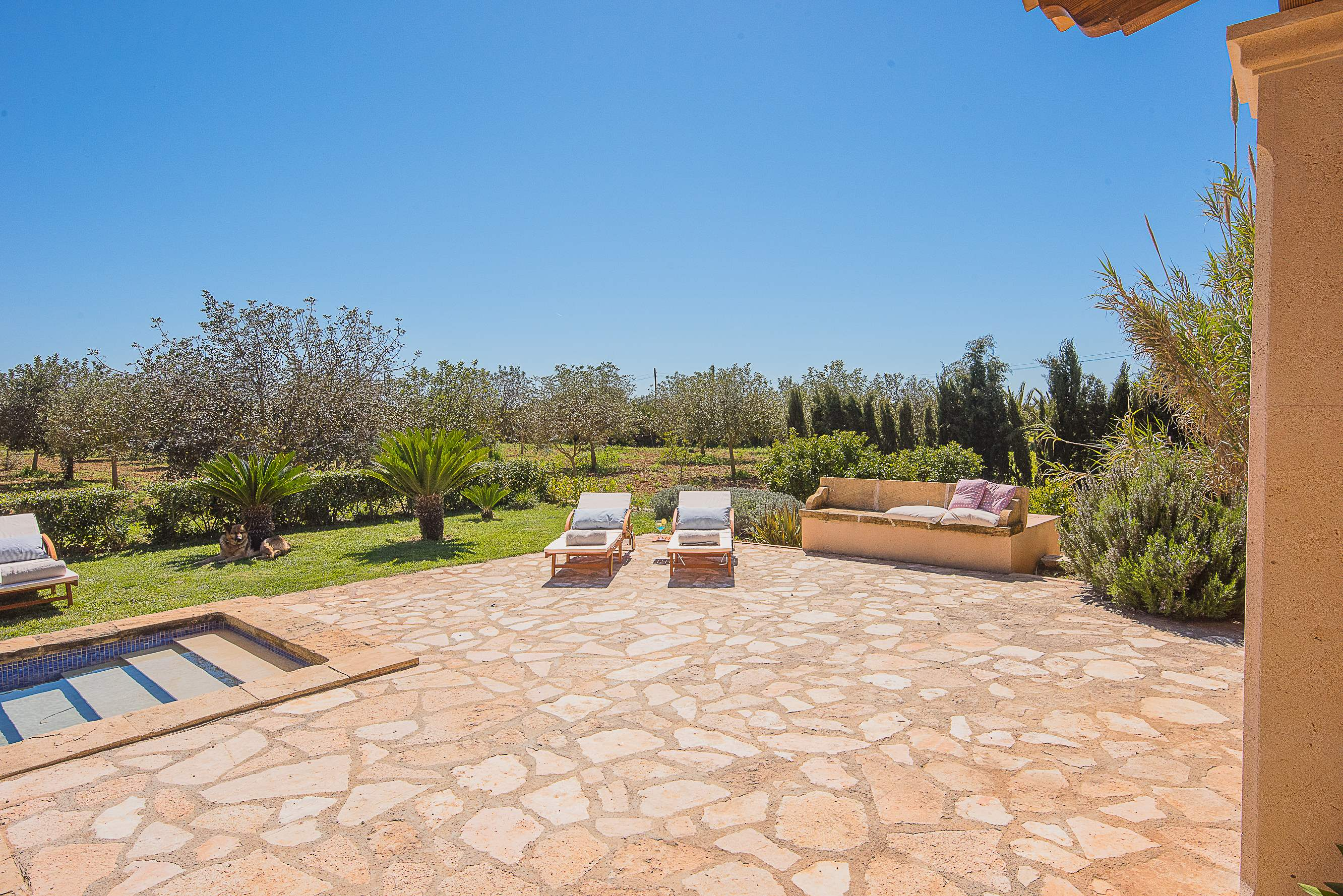 Villa Ses Quaranta, 4 bedroom villa in Campos & Sa Rapita , Majorca Photo #13