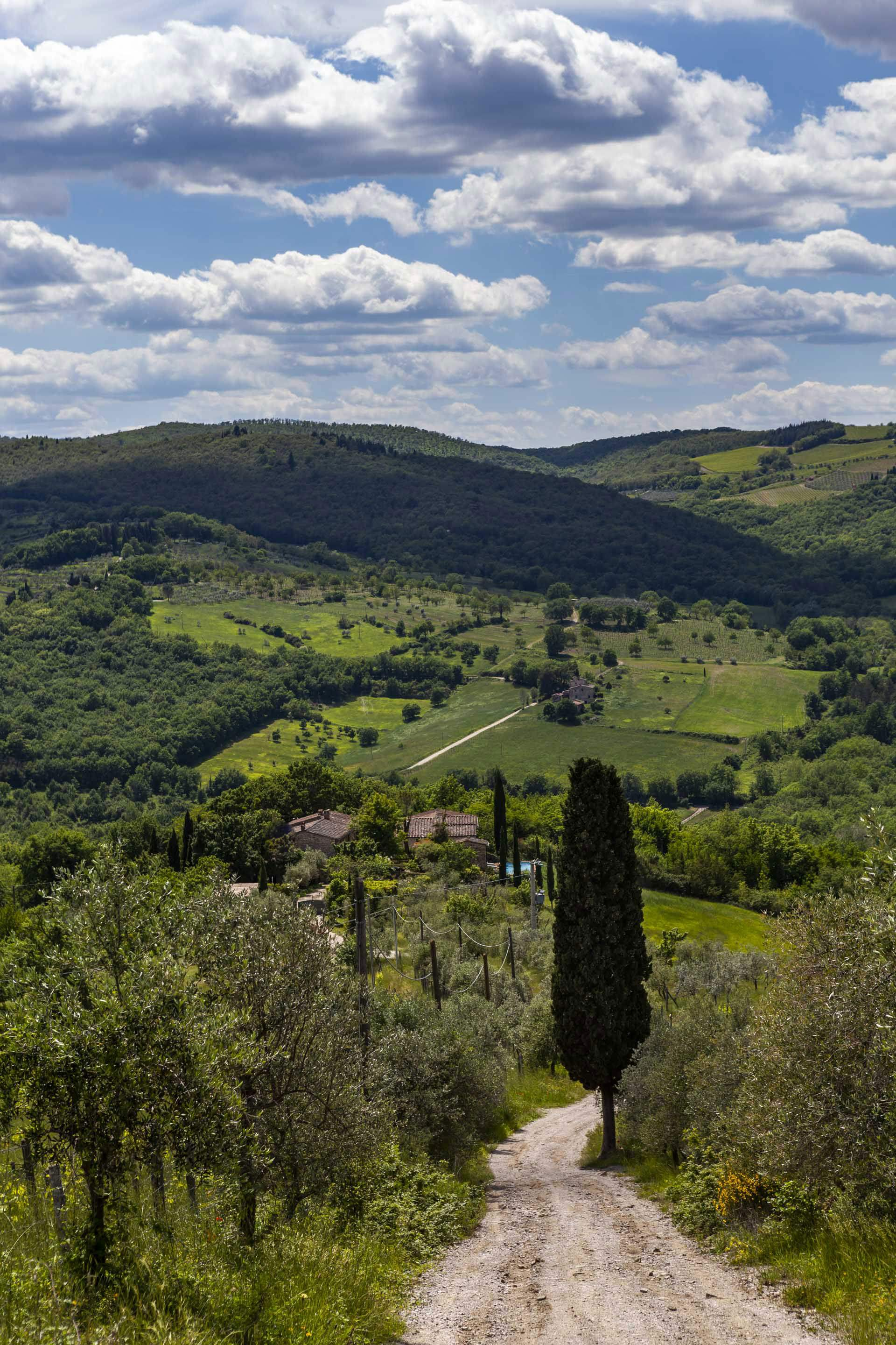 Villa Del Vino, 5 bedroom villa in Chianti & Countryside, Tuscany Photo #30